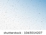 vector realistic water drops... | Shutterstock .eps vector #1065014207