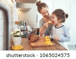 preparation of a family... | Shutterstock . vector #1065024575