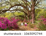 girls walking in the garden on ... | Shutterstock . vector #1065092744