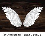 wings. vector illustration on... | Shutterstock .eps vector #1065214571