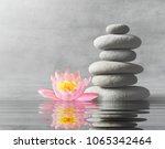 Stones And Pink Flower Lotus...