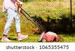 gardening. female person mowing ... | Shutterstock . vector #1065355475