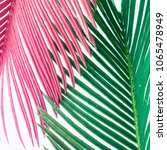 pink and green tropical leaves... | Shutterstock . vector #1065478949