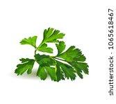 fresh green plant  nutritious ... | Shutterstock .eps vector #1065618467