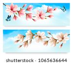 two nature banners with blossom ... | Shutterstock .eps vector #1065636644