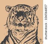 Tiger Head. Hand Drawing....