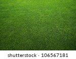 green grass background   Shutterstock . vector #106567181