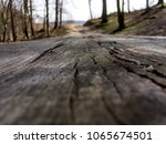 wooden table in the forest   Shutterstock . vector #1065674501