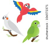 set of cartoon parrots   macaw  ... | Shutterstock .eps vector #106572371