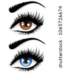 Detailed Female Eyes With Long...