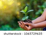 earth day in the hands of trees ... | Shutterstock . vector #1065729635