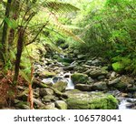stream among new zealand native ...   Shutterstock . vector #106578041