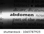 abdomen word in a dictionary.... | Shutterstock . vector #1065787925
