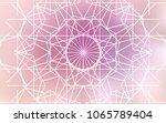 light pink vector doodle bright ... | Shutterstock .eps vector #1065789404