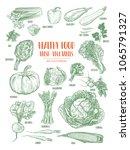 hand drawn fresh vegetables set.... | Shutterstock .eps vector #1065791327