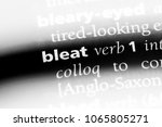 Small photo of bleat word in a dictionary. bleat concept.