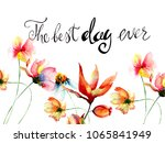 decorative summer flowers with... | Shutterstock . vector #1065841949