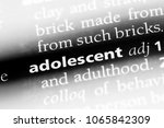 adolescent word in a dictionary.... | Shutterstock . vector #1065842309