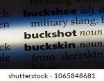Small photo of buckshot word in a dictionary. buckshot concept.