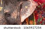 temple elephant  meenakshshi... | Shutterstock . vector #1065927254