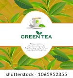green tea leaves manu and... | Shutterstock .eps vector #1065952355