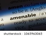 Small photo of amenable word in a dictionary. amenable concept.