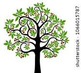 chestnut tree isolated on white ... | Shutterstock .eps vector #1066015787