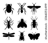 insect animal icon flat... | Shutterstock .eps vector #1066051499