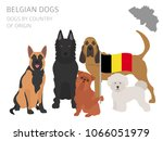 dogs by country of origin.... | Shutterstock .eps vector #1066051979