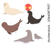 common seal flat character.... | Shutterstock .eps vector #1066087907