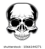 skull illustration. design... | Shutterstock .eps vector #1066144271