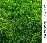 green grass texture from a... | Shutterstock . vector #10661449