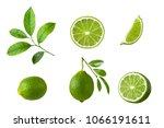 Set Of Lime Fruit  Green Lime...