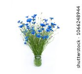 Rustic Bouquet Of Cut Blue...