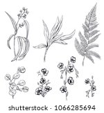 set of black monochrome flowers ... | Shutterstock .eps vector #1066285694