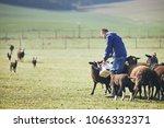 sunny morning on the rural farm.... | Shutterstock . vector #1066332371