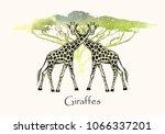 vector illustration. pen style... | Shutterstock .eps vector #1066337201