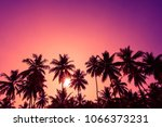 Tropical Sunset Coconut Palm...