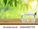 insurance concept  empty... | Shutterstock . vector #1066383755