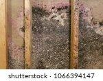 moldy basement wall   Shutterstock . vector #1066394147