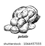 potato. bag of potatoes. hand... | Shutterstock .eps vector #1066457555