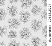light gray hibiscus flower... | Shutterstock .eps vector #1066515224