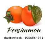 persimmon   a still life of two ... | Shutterstock .eps vector #1066564391