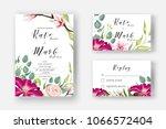 pink clematis  powder rose ... | Shutterstock .eps vector #1066572404