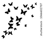 black butterfly  isolated on a... | Shutterstock .eps vector #1066602707