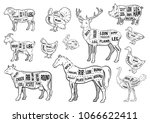 farm animals icons set.... | Shutterstock .eps vector #1066622411