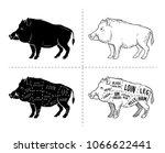 wild hog  boar game meat cut... | Shutterstock .eps vector #1066622441