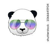 hand drawn panda in sun glasses.... | Shutterstock .eps vector #1066645934
