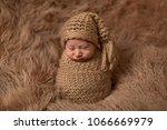 sleeping newborn baby in...   Shutterstock . vector #1066669979