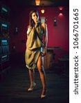 attractive slim brunette posing ...   Shutterstock . vector #1066701665
